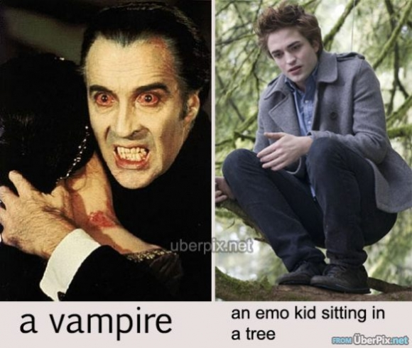 Difference_between_emo_and_vampire_Emo_vs_Vampire-s582x492-37868-580.jpg
