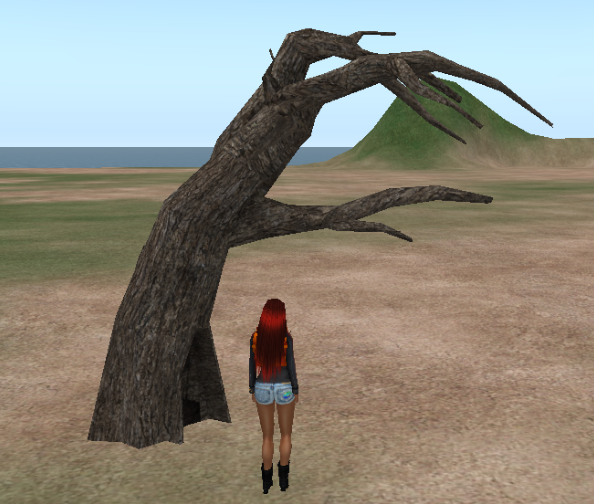 gnarly tree.png