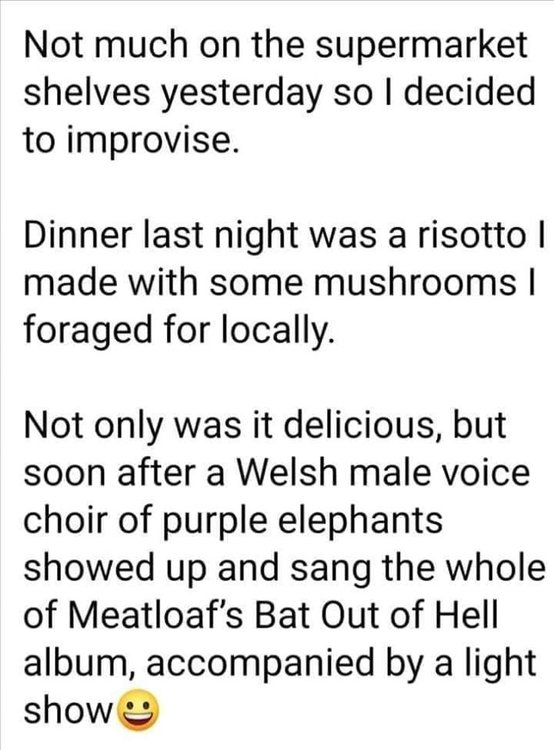 Image may contain: possible text that says 'Not much on the supermarket shelves yesterday so decided to improvise. Dinner last night was a risotto I made with some mushrooms foraged for locally. Not only was it delicious, but soon after a Welsh male voice choir of purple elephants showed up and sang the whole of Meatloaf's Bat Out of Hell album, accompanied by a light show'