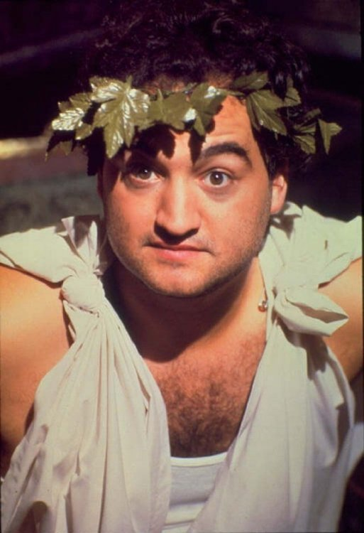 "For what else, a toga party! ""Toga! Toga!"" -John ""Bluto"" Blutarsky ..."