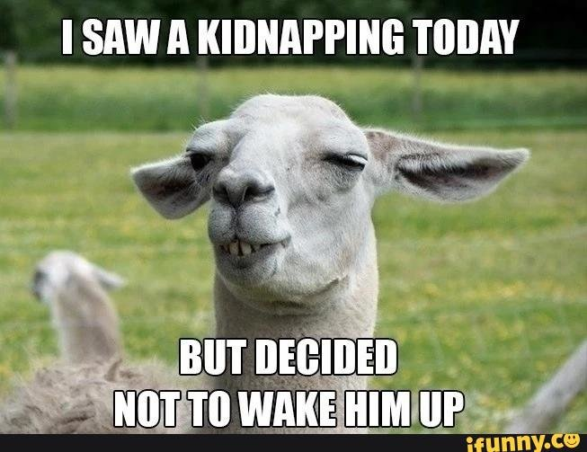 I-Saw-A-Kidnapping-Today-Funny-Goat-Meme
