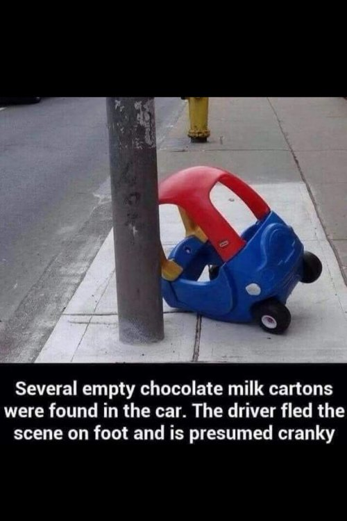 Image may contain: text that says 'Several empty chocolate milk cartons were found in the car. The driver fled the scene on foot and is presumed cranky'