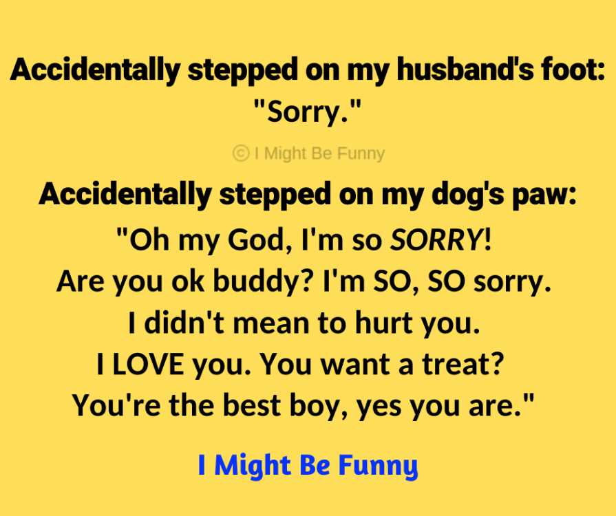 "Image may contain: text that says 'Accidentally stepped on my husband's foot: ""Sorry."" Might Be Funny Accidentally stepped on my dog's paw: ""Oh my God, I'm so SORRY! Are you ok buddy? I'm SO, sO sorry. I didn't mean to hurt you. I LOVE you. You want a treat? You're the best boy, yes you are."" I Might Be Funny'"