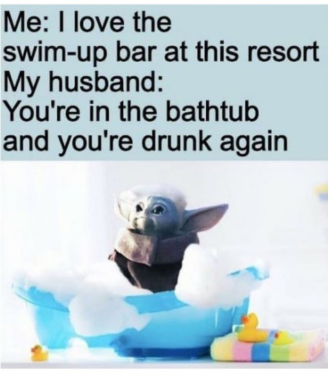 Image may contain: text that says 'Me: I love the swim-up bar at this resort My husband: You're in the bathtub and you're drunk again'