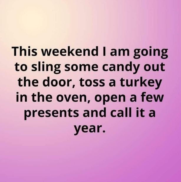 Image may contain: text that says 'This weekend I am going to sling some candy out the door, toss a turkey in the oven, open a few presents and call it a year.'