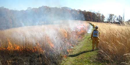 mowed-fire-break-3480.jpg&f=1&nofb=1