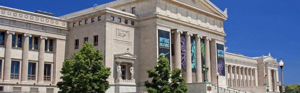 Image result for field museum chicago images""