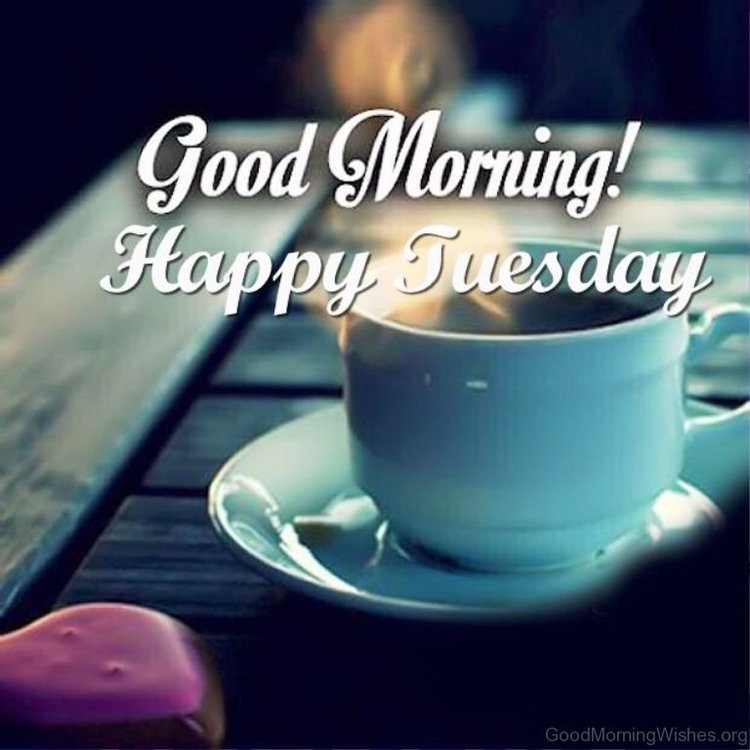 Good-Morning-Happy-Tuesday-Pic.jpg
