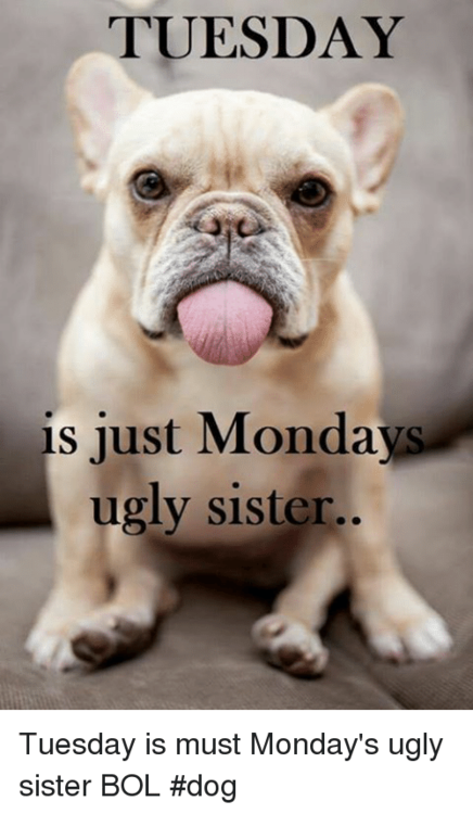 tuesday-is-just-mondays-ugly-sister-tuesday-is-must-mondays-7535625.png