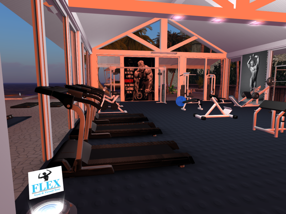 Flex Gym@Jibber_002.png