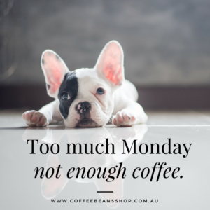 coffee-beans-shop-australia-online-monday-coffee-quote-dog-300x300.png