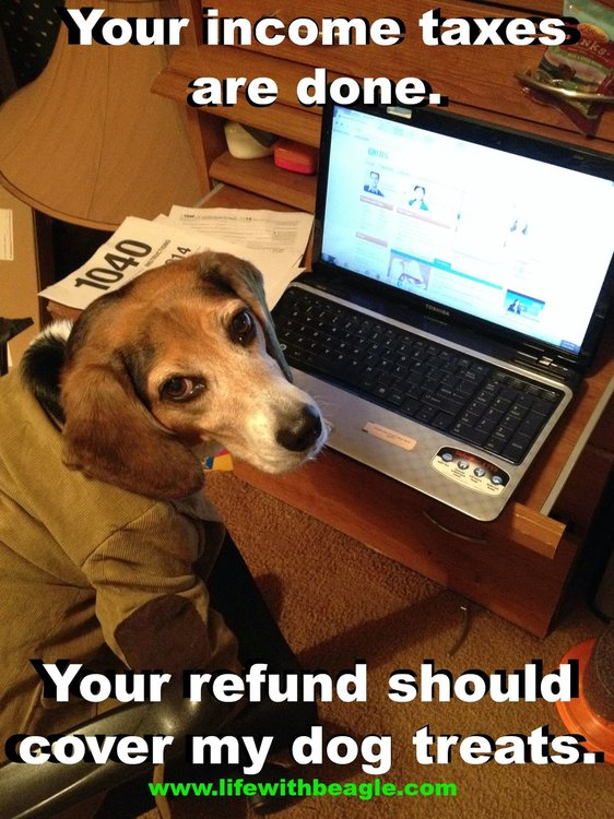 lulu-tax-refund.jpg