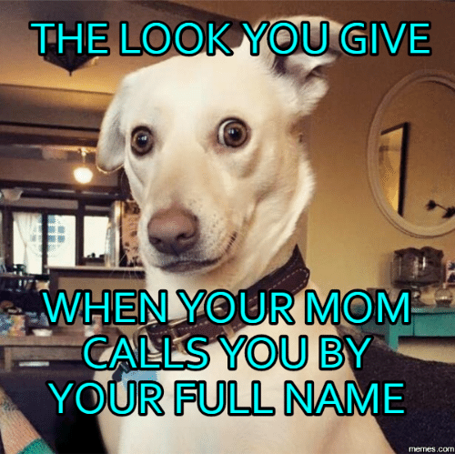 the-look-you-give-when-your-mom-calls-you-by-14165996.png