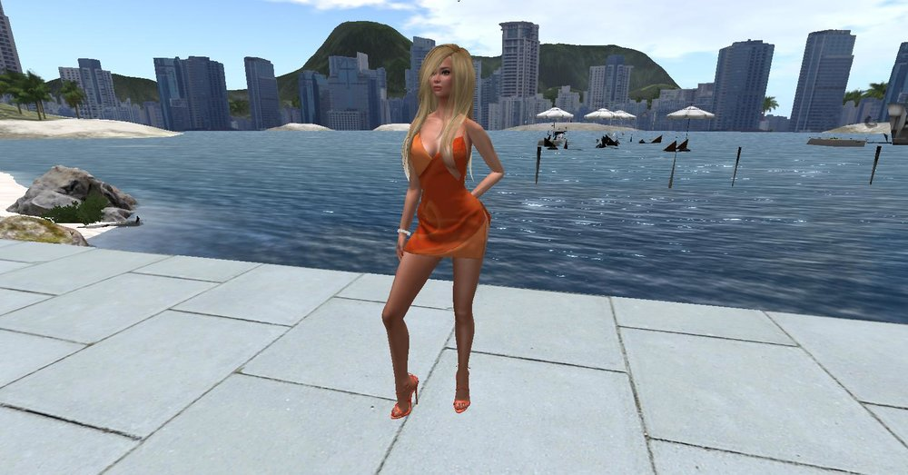 secondlife 19.jpg