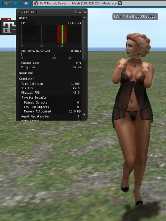 LINGERIE1.thumb.png.27032facda9c1c803aded9d2cfb27a6a.png