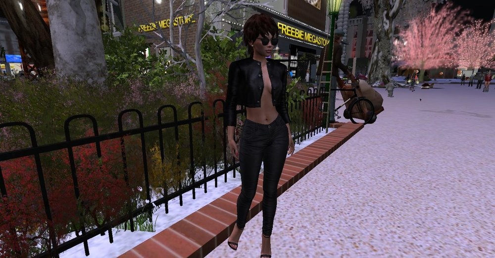 secondlife 12.jpg