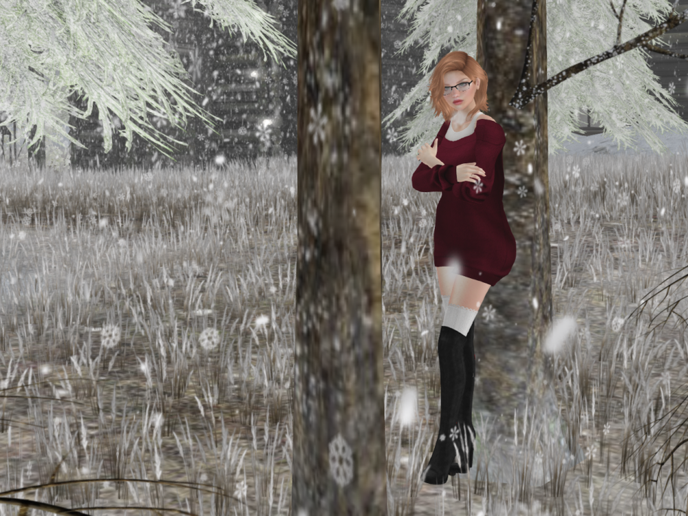 Snowy Day_006.png