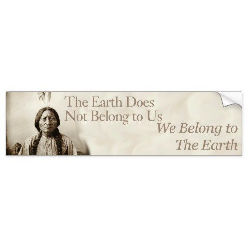 we_belong_to_the_earth_bumper_sticker-r3d978ca9b66f4cc3bde7f4a7a59236b7_v9wht_8byvr_512.jpg
