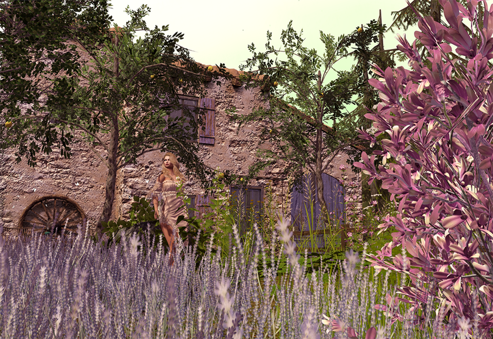 Provence afternoon_02.png