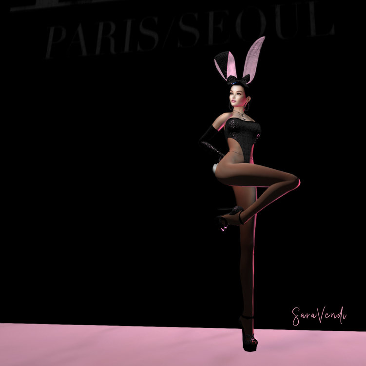 SARA BUNNY IN PARIS.jpg