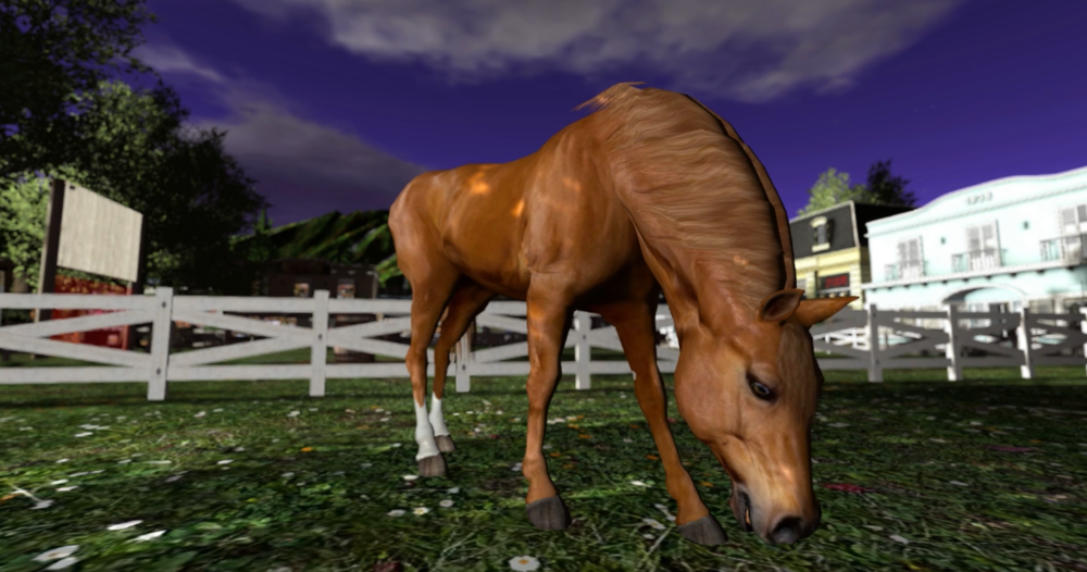 Horse alone.png