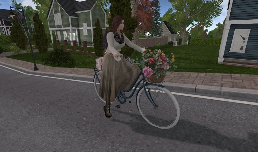 Dust Bunny Bicycle in New Linden Homes.jpg