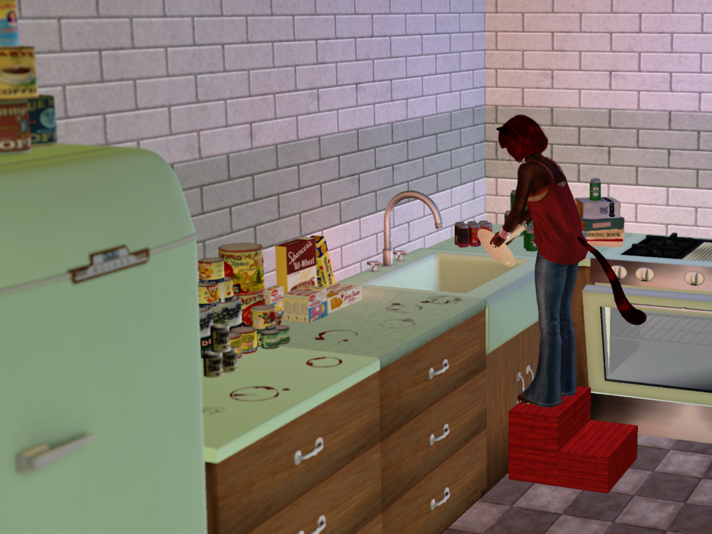 cleaning the kitchen.png