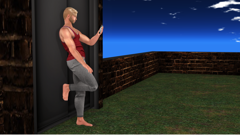 first pose.png