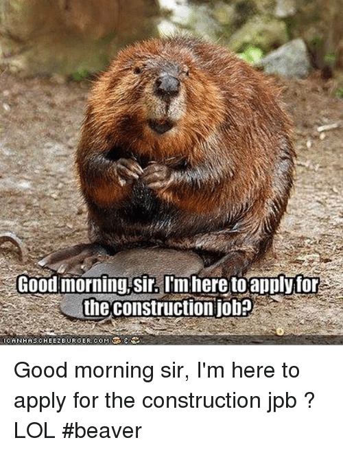 good-morning-sir-tmhere-to-apply-for-the-construction-job-23954764.png.013a075387b30cf94db4dafe96077935.png