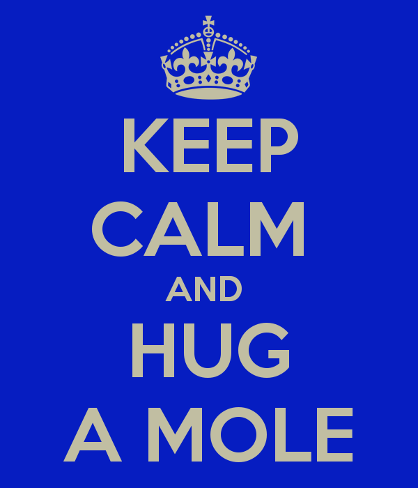 keep-calm-and-hug-a-mole-1.png