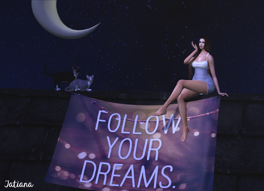 Follow Your Dreams.png