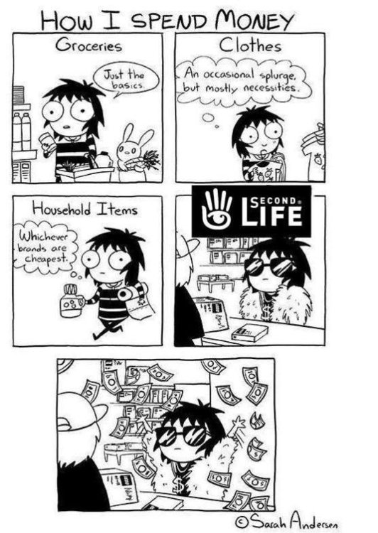 second-life-money-cartoon.jpg