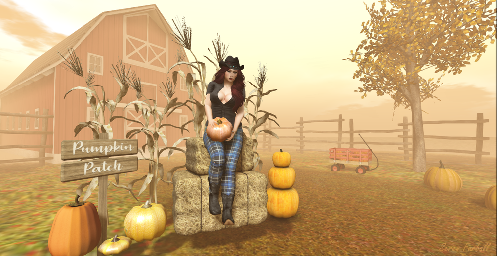 Celebrating Autumn_001.png