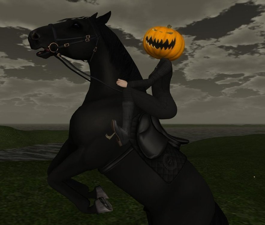 Teegle Pet Headless Horseman.jpg