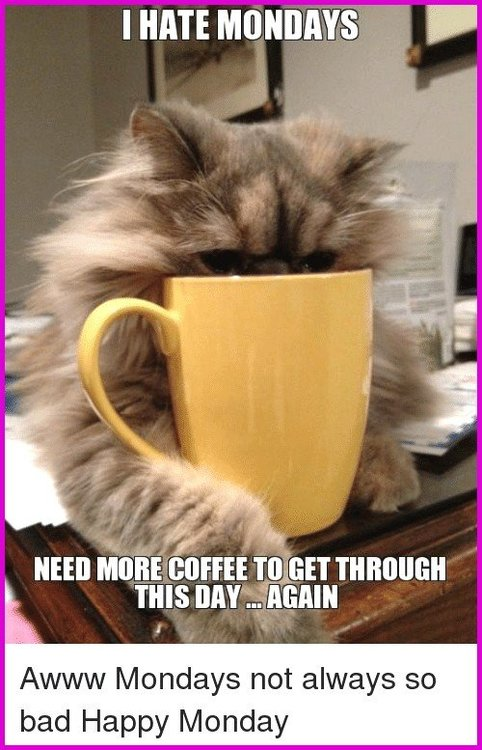happy-coffee-meme-inspirational-funny-more-coffee-memes-of-2017-on-sizzle-of-happy-coffee-meme.png