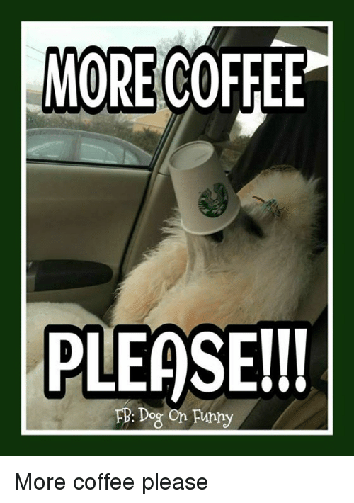 more-coffee-please-l-fb-dog-on-fupny-more-coffee-please-30259125.png