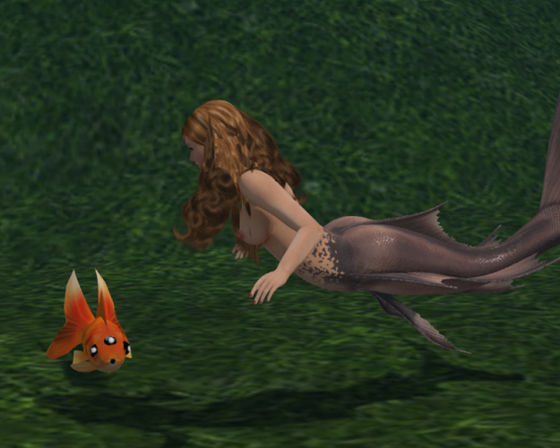 1655495015_Mermaid11-10-2019_FISH.png.4e5f1feea36a73e6798153590d1875ee.png