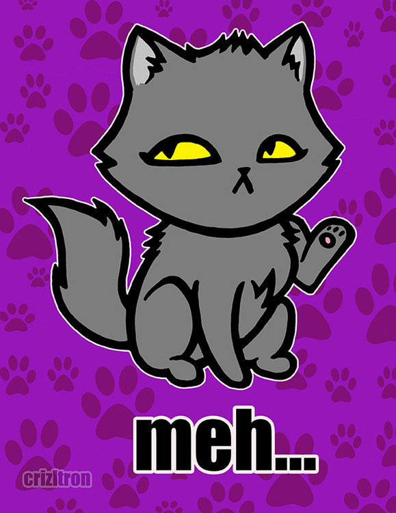 meh_cat_print00_20copy_original.jpg