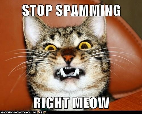 stop-spamming-right-meow.jpg.4078d7ee98de708e123cd9fee094876d.jpg