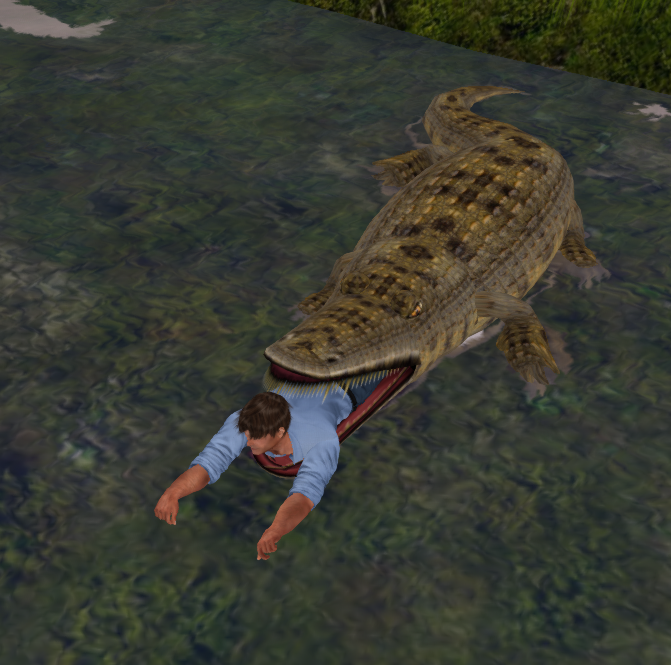 Crocodile_001C.png