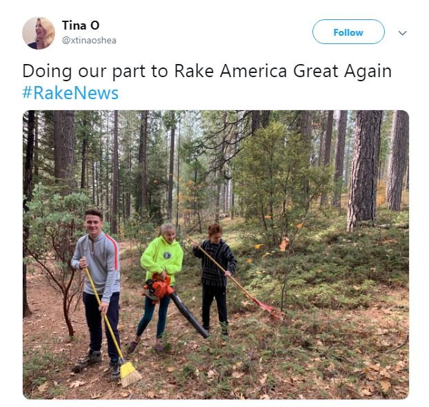 raking america great again.JPG