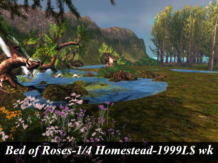 land board bed of roses NE.jpg