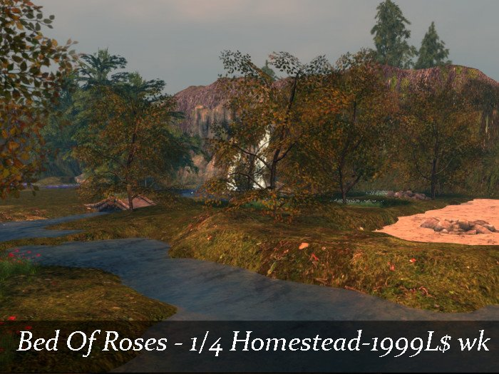 land board  NW BED OF ROSES.jpg