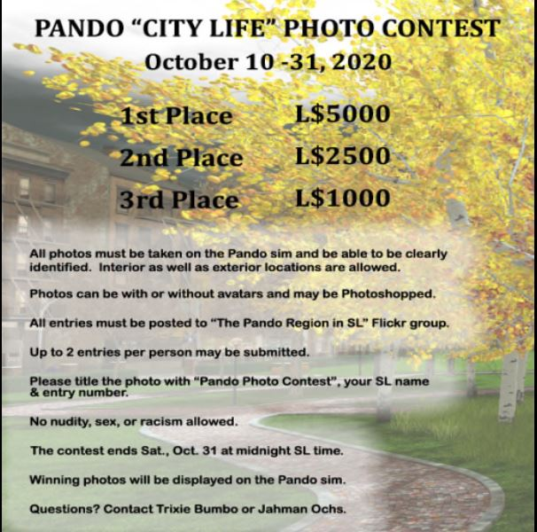 City Life Photo Contest.JPG