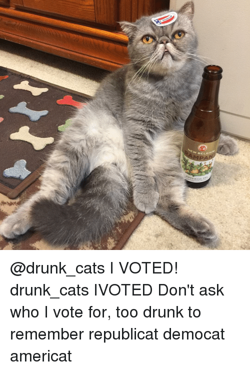 drunk-cats.png.38ef0e0f2548efe760872d800336bf32.png