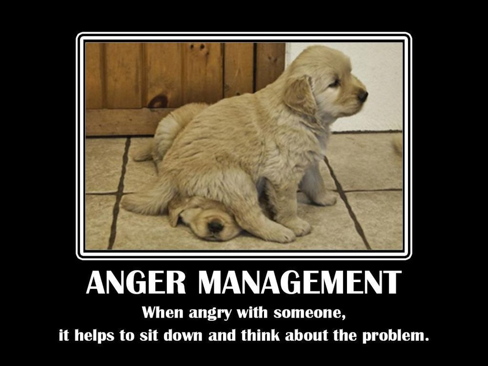 funny-anger-quotes_011-1024x768.jpg