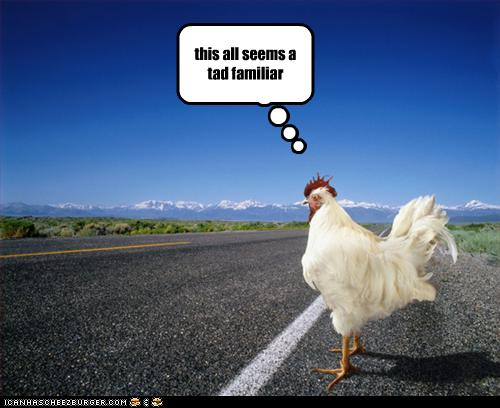 023-0328122921-funny-pictures-chicken-crosses-road.jpg
