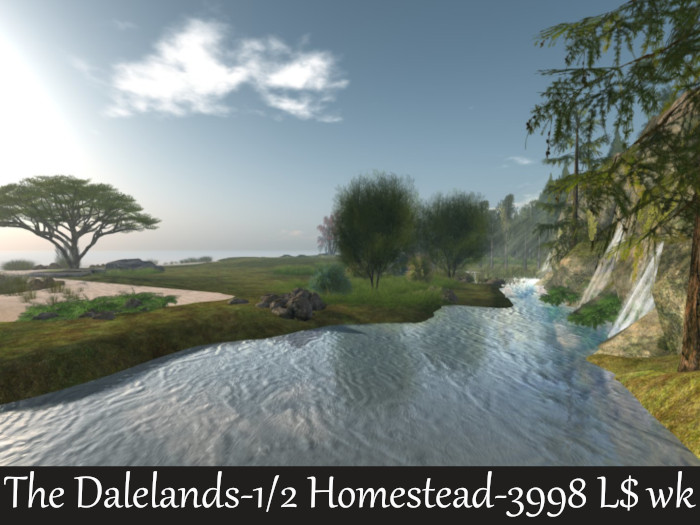 land board  SW 2021 half the dalelands.jpg