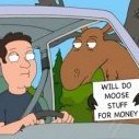 Moose-Stuff-For-Money