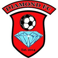 diamond.jpg.a771cd9536292c9523821a445b89f54f.jpg